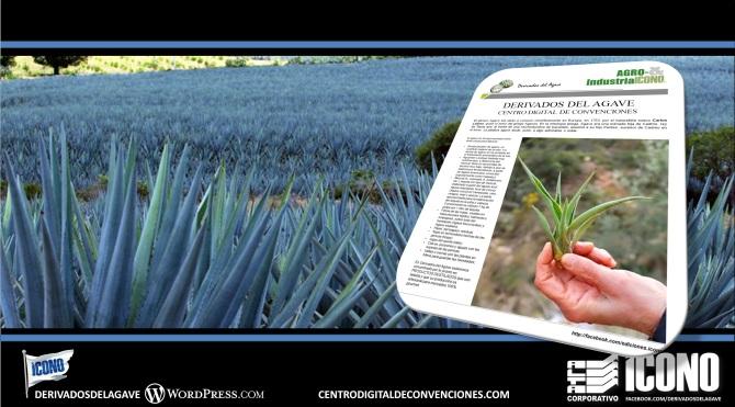 10-08-2016-cdc-derivados-del-agave-collage-003